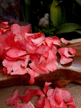 Preserved Orchid Petals Cherry Red