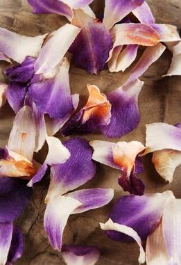 Preserved Orchid Petals Purple, Ivory & Orange