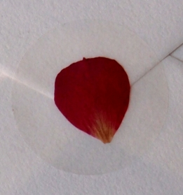 Pressed Flower Envelope Seals Red Rose Petal (12 stickers/pkg)