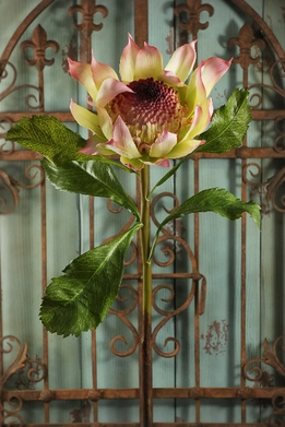 Proteas Silk Flowers Yellow & Pink