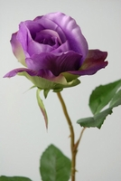 Purple Silk Roses