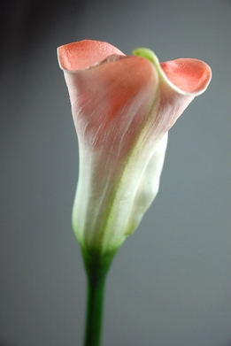 Real Touch Calla Lily Flowers Light Pink