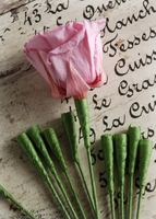 Rose Stems for Preserved Roses