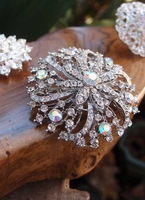"Round Crystal Pin 2.5"" wide"