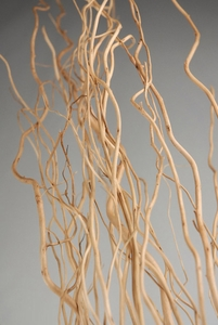 Sanded Natural Willow Branches 46in