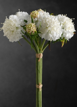Cream White Scabiosa Bouquet