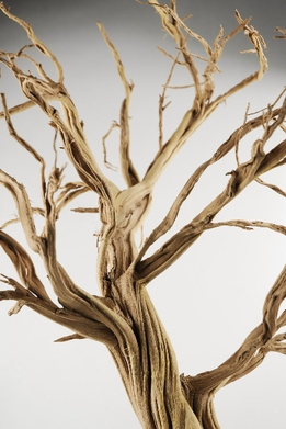 Sculpture Trees Natural Branches 13-16""
