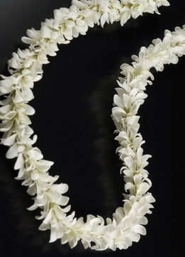 Silk Flowers Leis White Silk Jasmine