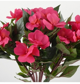 Silk Impatiens Beauty Red 11x14