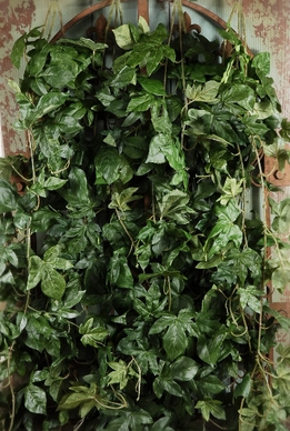 "Silk Ivy Wall 32"" x 18"" Mountable"