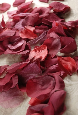 Silk Rose Petals Burgundy (100 petals)