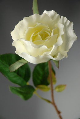 "Silk Roses Cream White 26"" tall"
