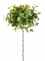Silk Trees, topiary tree tops, floor plants, potted plants