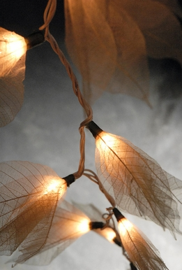 Skeleton Bodhi Leaf Flower String Lights | Ivory