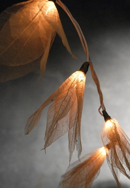 Skeleton Bodhi Leaf Flower String Lights | Natural