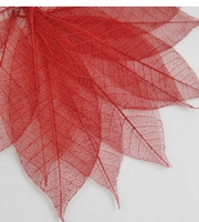 "Skeleton Leaves 3"" Red Rubber Tree Leaves (pkg 10 leaves)"