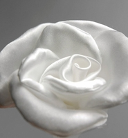 Soft Ivory Satin Rolled Rose 3 inch