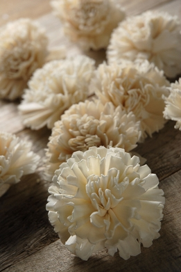 Sola Flowers Carnations  (12 pieces/pkg)