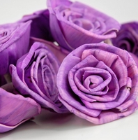 Sola Flowers Purple Roses (15 flowers/ pkg)