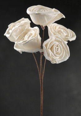 Sola Roses on wire stems (5 flowers/bunch)