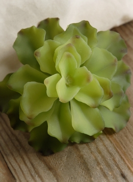 "Succulents Agave Natural Touch 4.5"" Stem"