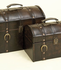"Train Cases 11"" & 13"" Leather with Straps (set of two)"