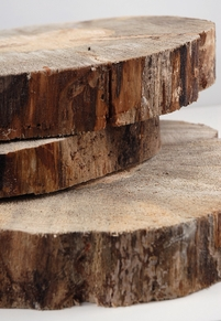 "Tree Slabs Round Natural Wood 12-14"" wide"