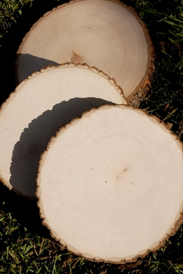 Tree Slices, Slabs, Round 9-12""