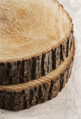 Round Reversible Tree Slices with Bark 10in