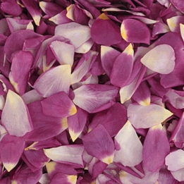 Violet Je t'aime Natural Rose Petals Freeze Dried (5 cups/pkg)