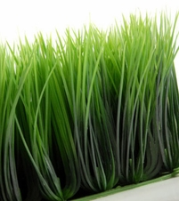 Wheat Grass Mat Artificial 10.5in Square