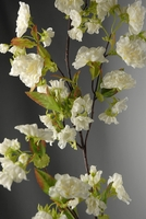 White Cherry Blossoms Branches (artificial)
