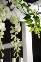 Artificial White Wisteria Garland 5ft