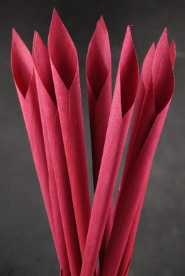 Wood Calla Cones Red (12 cones/ pkg)
