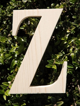 "Wood Letters Greek Zeta 3/4"" thick 6"" tall"