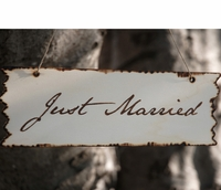 """Just Married"" Birch Wood Sign 10in"