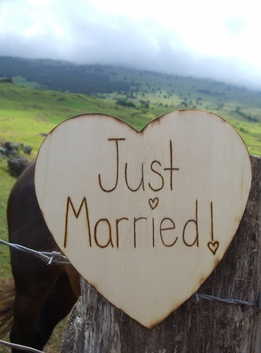 """Just Married"" Heart Shaped Wood Sign 9in"