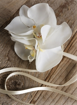Wrist Corsage White Silk Orchids with Ribbon Tie