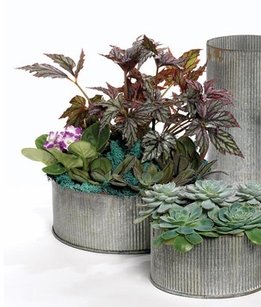 Corrugated Zinc Pot