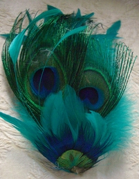 "Zoe Peacock Feather 6-1/2"" Fascinator Hair Decoration"