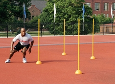 Agility Poles by Powermax