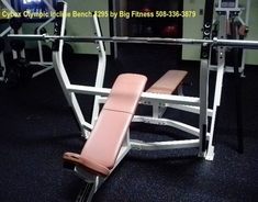 Cybex Olympic Incline Bench