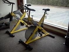 LeMond RevMaster Indoor Cycling Bike (Serviced & Detailed)