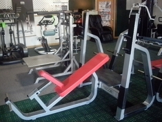 Precor Olympic Incline Bench