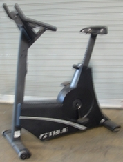 True Upright Bike Model 750 (Used)
