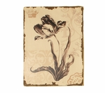 Distressed Painted Iris Wooden Floral 15.75''H Wall Art - Cream and Brown [2198-FS-PAS]