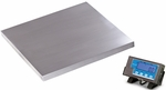 500lb Capacity Floor Scale with Stainless Steel Platform - 22''L X 22''W X 3.88''H [PS500-22-SALB]