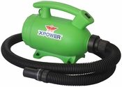B-55 Home 2-Speed Pet Dryer with 3 Nozzle Accessories and 2 HP - Green