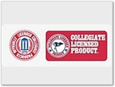Collegiate Logo Pennants