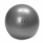 Exercise Ball 55cm Gray [BSTSB55-FS-BODY]